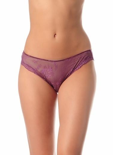 Gallipoli Kadın Dantelli Bikini Slip Külot  Mor